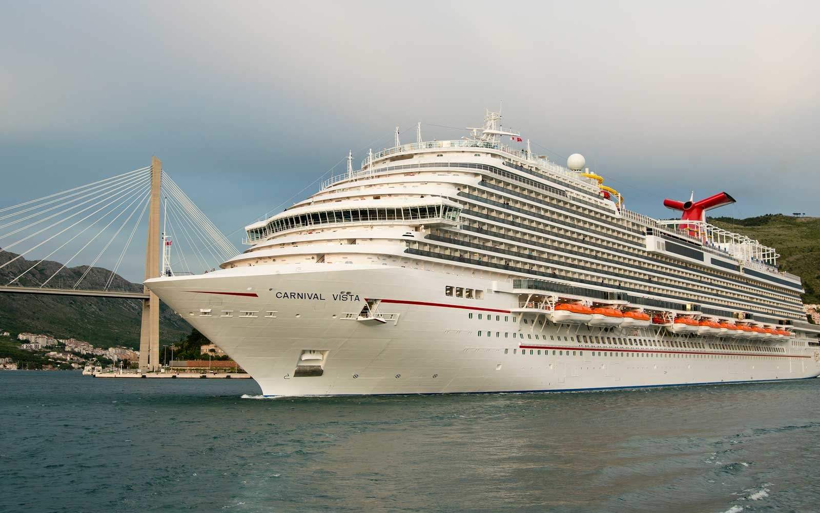 carnival cruise line application form